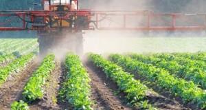 Servono 18 decreti attuativi per dare operatività al Pan sui fitofarmaci in agricoltura. L'analisi 5 Stelle