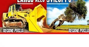Il Governo Letta non trova i margini tecnici per impugnare le modifiche alla Taglia Ulivi ma la Regione Puglia deve emanare una direttiva