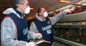 Maxi indagine dei Nas di Perugia in 21 province di 12 regioni. Il M5S invoca la Commissione d'inchiesta Anti-contraffazione per tutelare il Made in Italy