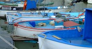 La crisi, la scarsa disponibilità di risorse ittiche e gli elevati costi mettono in ginocchio la pesca mentre i premi sul Fermo 2013 tardano ad arrivare