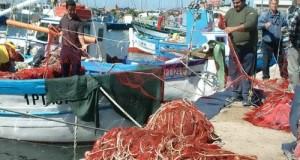 Il Ministro Martina risponde all'interrogazione M5S e dichiara: Precedenza a coloro che hanno interrotto prima l'attività di pesca