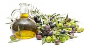 Approvato, durante la discussione della Legge di Stabilità alla Camera, un ordine del giorno M5S per il sostegno al settore olivicolo