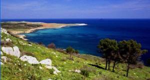 Il M5S invia una lettera con proposte, richieste e suggerimenti al Presidente Vendola ed a tutti gli enti locali per la tutela dell'ambiente della Puglia