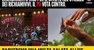 M5S e Lipu contro l'atroce pratica dei richiami vivi ha visto l'Ue aprire una procedura d'infrazione nei confronti dell'Italia, che ora rischia una multa