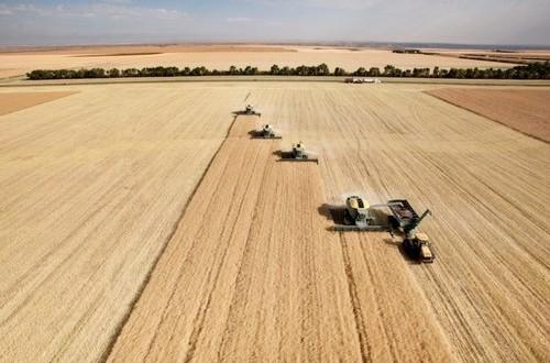 Accolto il mio emendamento per istituire le Commissioni Uniche di filiera per l'intero comparto agroalimentare al posto delle Borse Merci.Ecco cosa cambierà