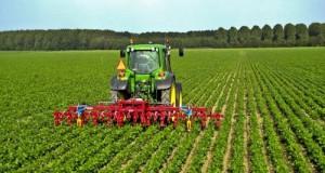 Il Decreto 51 rappresenta un primo passo in avanti, seppur non ancora sufficiente per rilanciare l'agricoltura italiana che raccoglie diverse proposte M5S