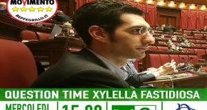 Nel question time in Aula, il ministro dell'Agricoltura Martina non chiarisce la vicenda dei ceppi importati dallo IAM (Istituto Agronomico Mediterraneo)