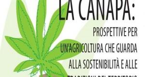 Chiusa la fase emendativa della legge che racchiude semplificazioni alla coltivazione, trasformazione e commercializzazione della canapa e dei suoi derivati