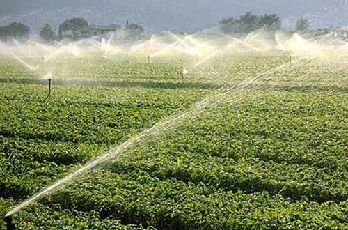 Dopo i numerosi tagli degli scorsi anni, il M5S chiede nuovo gasolio agevolato a fronte degli ingenti consumi per irrigazione sostenuti dagli agricoltori