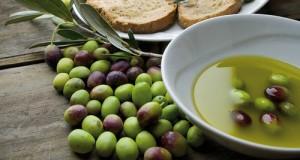 Replica all'editoriale del direttore de La Gazzetta del Mezzogiorno Giuseppe De Tomaso sul comparto olivicolo della Puglia