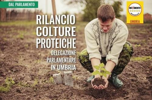 Risoluzione M5S per predisporre un piano nazionale di sviluppo delle colture proteiche