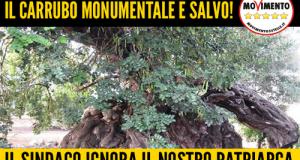 Accordo tra la Snam e i proprietari del terreno per il nuovo percorso del metanodotto, che metteva a rischio il carrubo monumentale di Polignano
