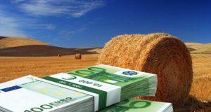 Bocciate le proposte M5S in Stabilità: abolizione Imu agricola terreni in affitto ad agricoltori, riduzione accise per i microbirrifici e Iva pappa reale