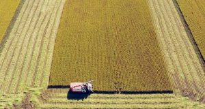 Il M5S pronto al confronto per la revisione della PAC. Ecco le proposte dei 5 Stelle sulla modifica alla Politica Agricola Comune