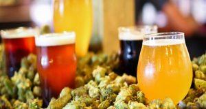 Accolti gli emendamenti M5S. La Birra Artigianale ha finalmente una sua definizione. Ecco i prossimi passi a sostegno del settore