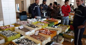 Dopo le proteste di Roma, approda in Aula a Montecitorio a fine marzo la riforma ittica. Prossimo passo delle marinerie e farsi sentire sui GAL