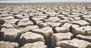 Mentre la Commissione Agricoltura approva una risoluzione unitaria sull'emergenza idrica, mancano i fondi per il Consorzio di Bonifica della Capitanata