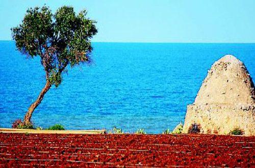 Nuova bocciatura in 18 anni per lo sviluppo turistico di Parco dei Trulli sulla costa del sud-est barese in contrada Ripagnola a Polignano