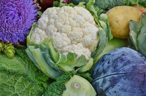 Vietare la produzione di piantine di cavoli, pomodori e melanzane nei vivai della nuova fascia cuscinetto è l'incredibile decisione della Regione Puglia