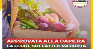"""Agricoltura sostenibile e tutela del made in Italy sono gli obiettivi che si pone la proposta di legge sulla filiera corta ed il """"chilometro zero o utile"""""""