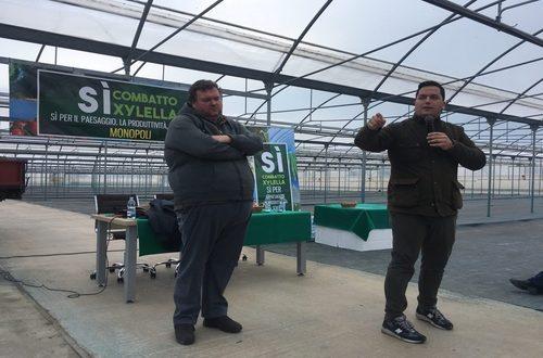 Nonostante le indicazioni del Servizio Fitosanitario Centrale, sollecitato dal M5S nei mesi scorsi, la Regione Puglia stenta a dare risposte ai vivai