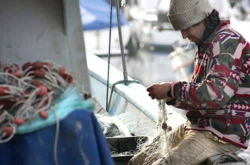 Come promesso a fine gennaio al mondo della pesca italiana, sceso in piazza, parte la discussione delle proposte di legge di riforma del comparto ittico
