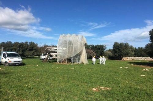 La Regione Puglia deve rendere noto l'errore sul Caso Caramanna in agro di Monopoli. Senza risposte certe si assiste allo svilimento delle Istituzioni