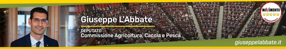 Giuseppe L'Abbate | Un cittadino in Parlamento